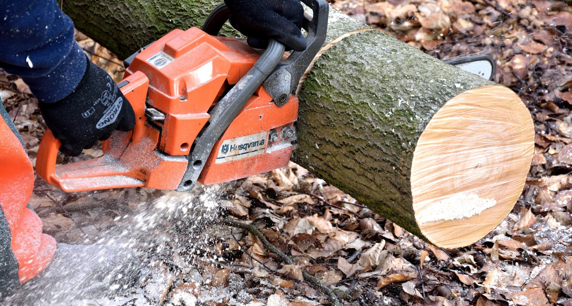 Southern Maryland Fellers Tree Service